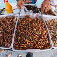 Trzy tajskie dania które niekoniecznie będziesz chciał spróbować
