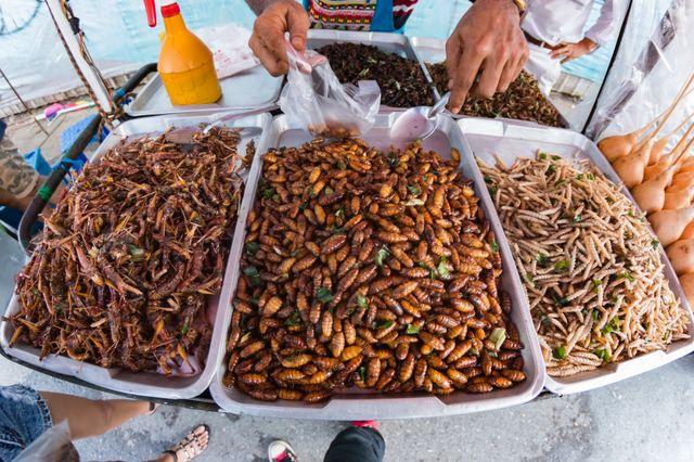 Smażone insekty sprzedawane z wózka w Bangkoku
